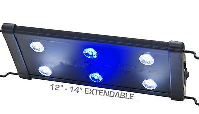 evo 12 quot led aquarium light nano marine coral reef cichlid 6x 3w 3 watt 30 40 cm